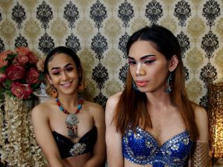 Sexet profilfoto af model TwoLovelyShemales, til meget hot live show webcam!