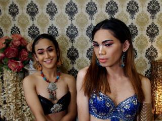 Hình ảnh đại diện sexy của người mẫu TwoLovelyShemales để phục vụ một show webcam trực tuyến vô cùng nóng bỏng!