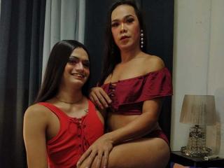 TransAbblexseX